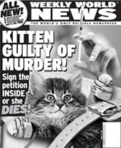Kitten guilty of Murder!.jpg